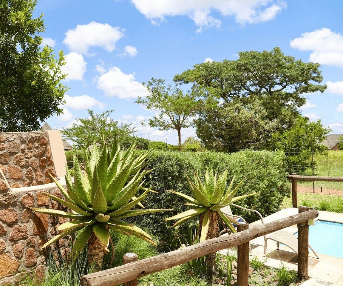 Big 5 Game reserve Pretoria - Gallery, Villas, outside