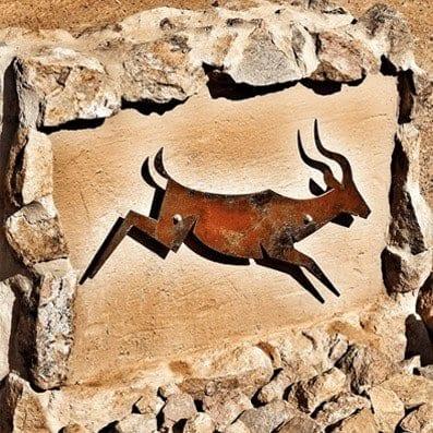 About Golden Impalas Dinokeng