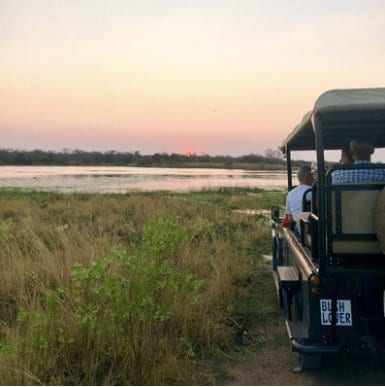 Bush game drives