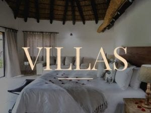 Accommodation Golden Impalas - Villas Dinokeng Game Reserve
