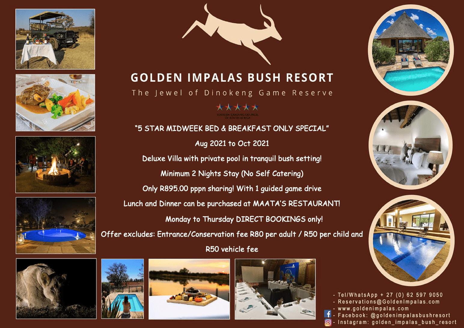 Godlen Impalas Winter Weekend